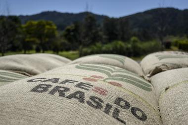 Brasil hoãn đấu giá cà phê của Chính phủ