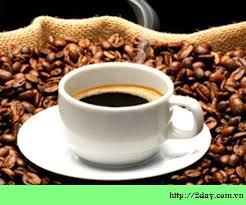 Giá cà phê, đã chạm đáy chưa?