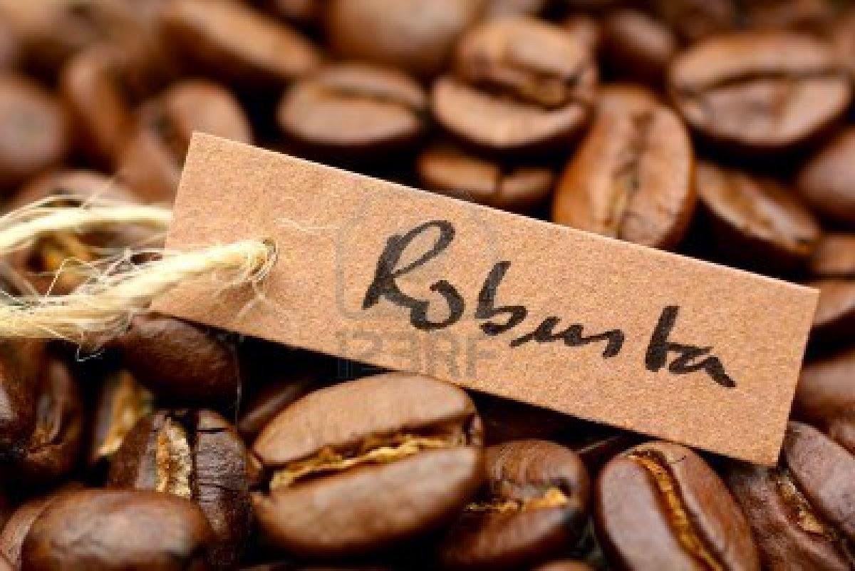 Điểm tham chiếu cà phê robusta