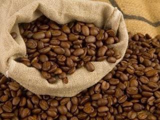 Giá cà phê trong nước ngày 15/05/2015 tăng trở lại 500 ngàn đồng/ tấn