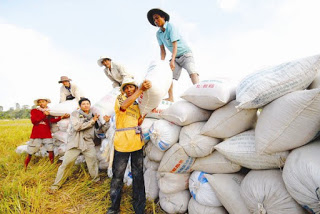 Thương mại nông sản trong nội khối TPP - Việt Nam đang bị thâm hụt