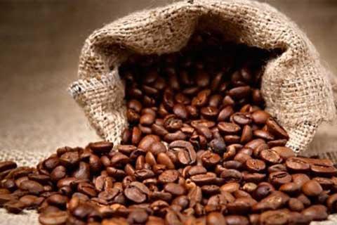 Giá cà phê tiếp tục tăng do hạn hán