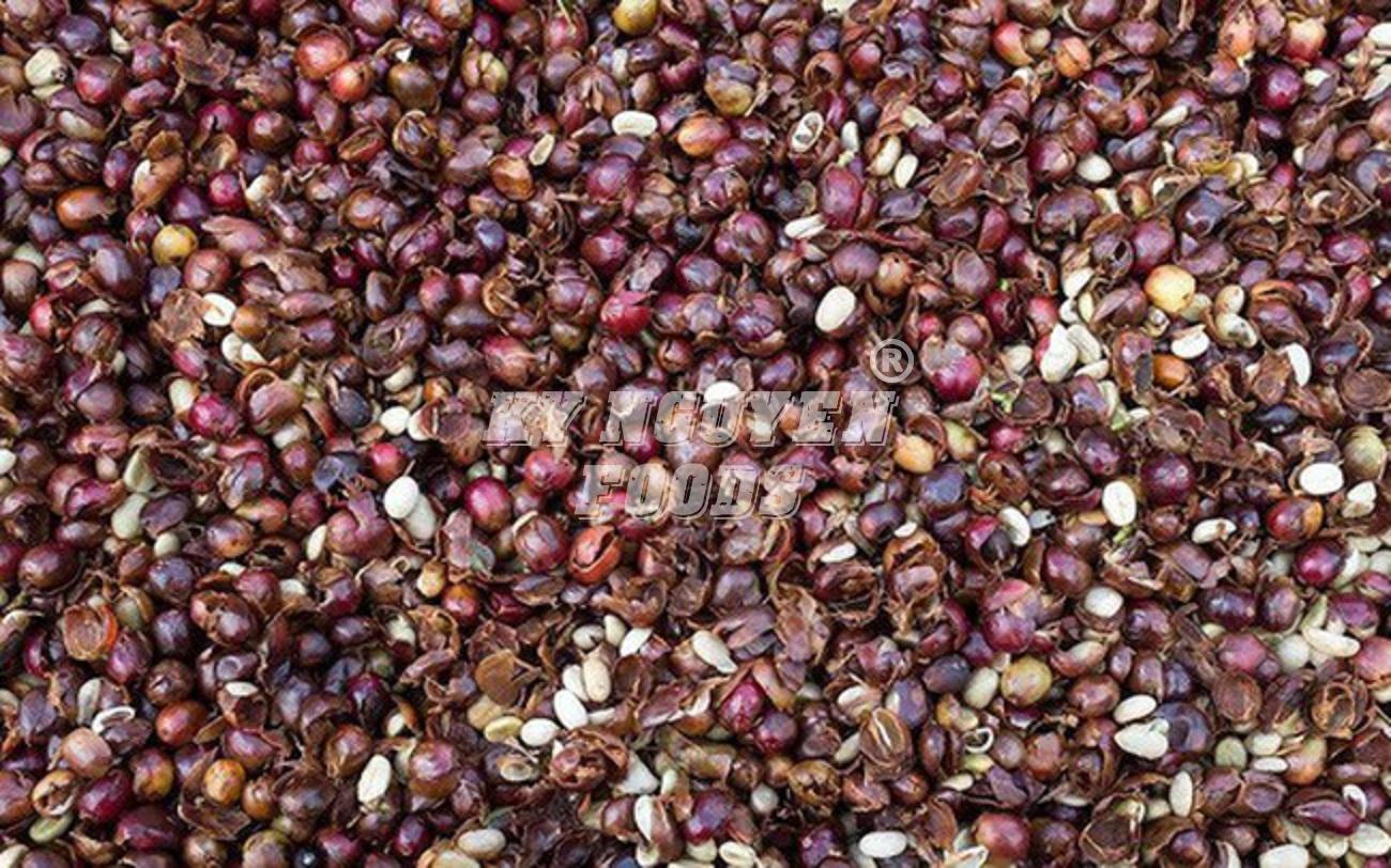 Giá cà phê thế giới giao dịch ở mức thấp nhiều năm